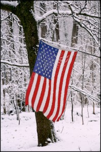 American Flag In Snowstorm