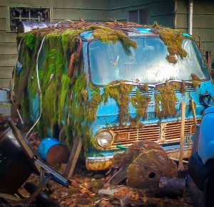 Dilapidated van is overgrown by moss.