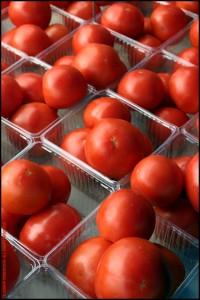 JP1252 Tomatoes In Plastic Baskets, Millburn Farmers Market