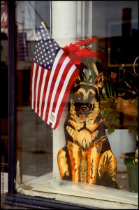 JP1206 Flag In Shop Window - Chicago IL