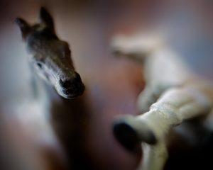 """David B Moore """"Horse Memories"""" 09/10/16"""